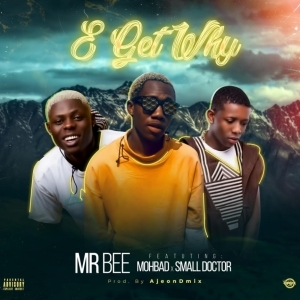 Mr Bee - E Get Why (Prod. by Ajeondmix) ft. Small Doctor & Mohbad